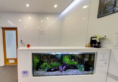smiles nambour reception area home dentist nambour